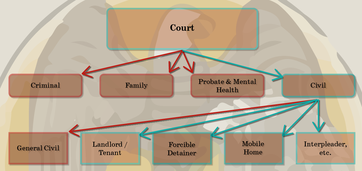 Case Category Structure